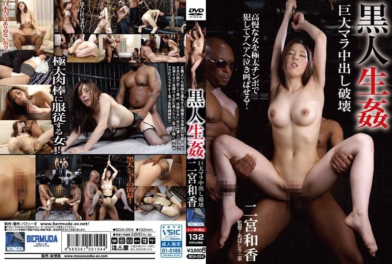 BDA-054 Black Life Insult Giant Mala Cum Inside Destruction Waka Ninomiya