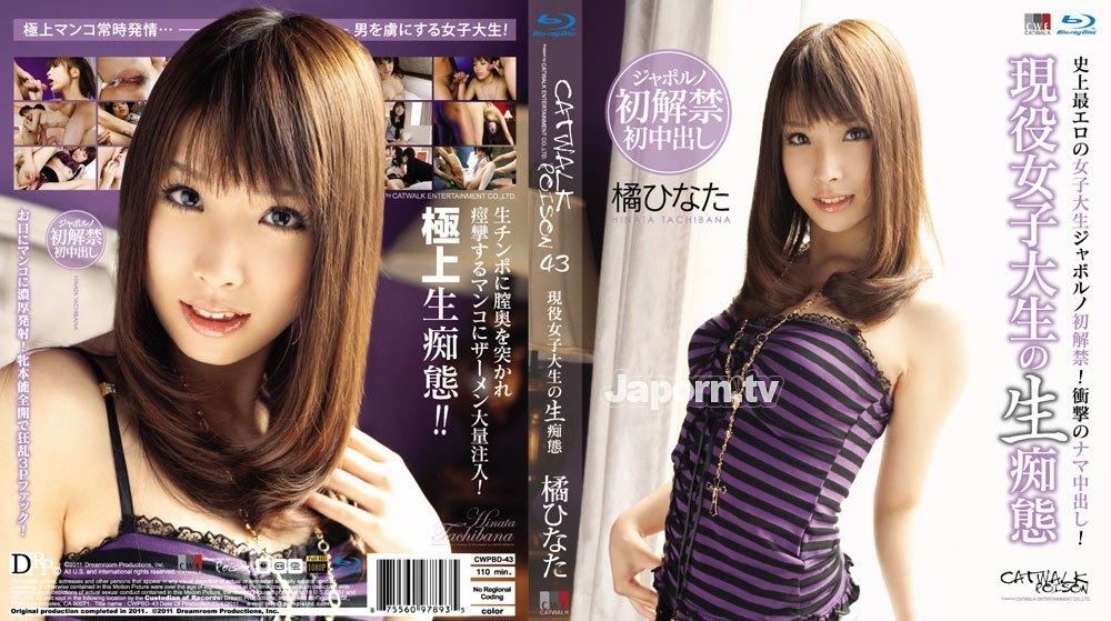 CWPBD-43 CATWALK POISON 43 : Hinata Tachibana