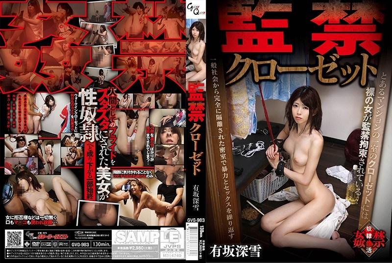 GVG-983 Confinement Closet Arisaka Miyuki